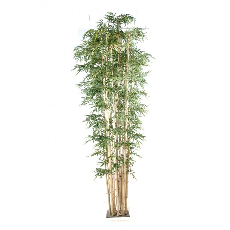 Le Ficus Plastique Pas Cher Exterieur